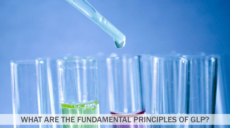 What Are The Fundamental Principles of GLP?